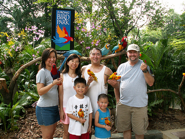 Du lich Công viên chim Jurong Bird Park Singapore