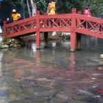 Suoi Ca Cam Luong Sam Son Thanh Hoa