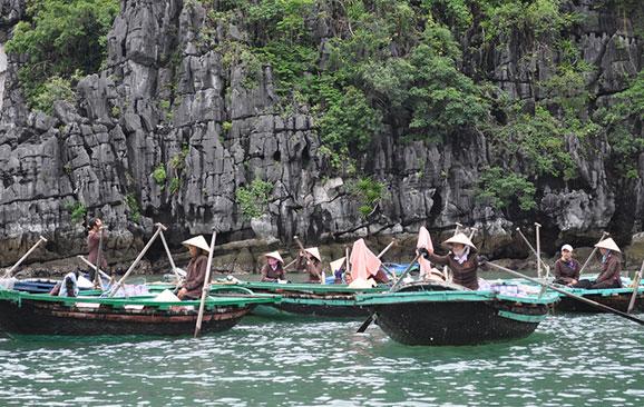Làng chài Vung Viêng, Vung Vieng fishing village
