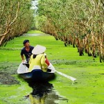 ườn Quốc gia U Minh Thượng trở thành Vườn di sản ASEAN
