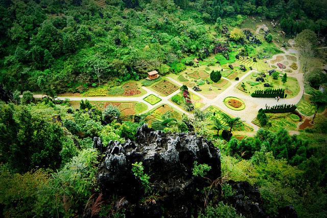 Từ đỉnh núi Hàm Rồng Sapa nhìn xuỗng Vườn Hoa