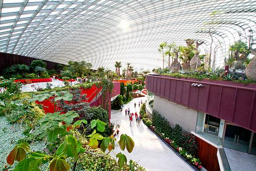Thăm quan một khu nhà vườn trong nhà kính mái vòm (Flower Dome ho ặc Cloud Forest)