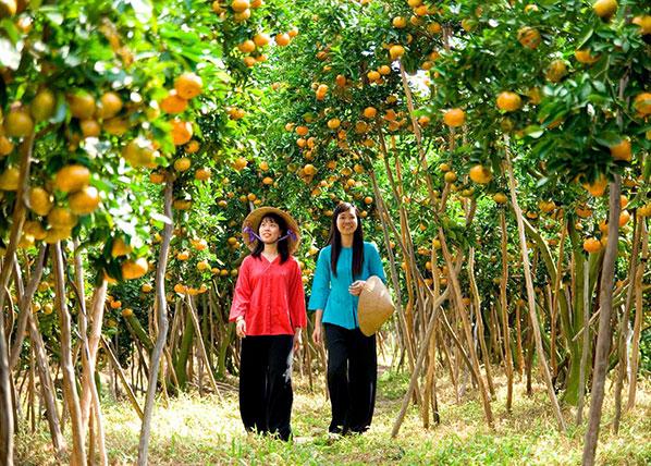 Du lich vườn trái cây Nam Bộ